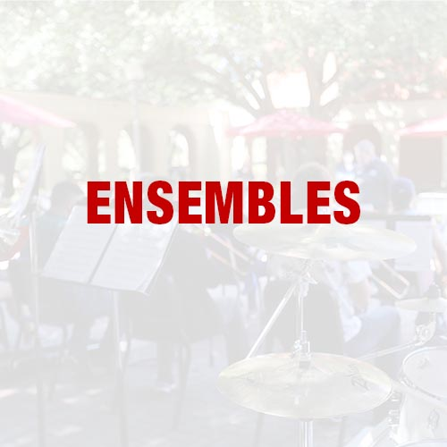 Ensemble Opportunities