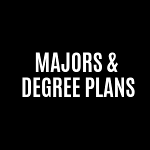 majors and degree plans
